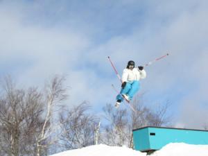 Mt McSauba Public Ski Resort near Charlevoix Inn.