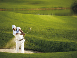 Golf courses near St. George Inn & Suites.