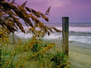 The beach at Beachwoods.