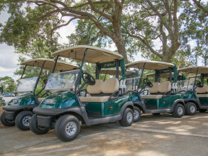 Golf carts at Sea Palms Resort.