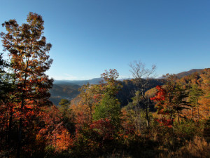 Fall colors at Westgate Smoky Mountain Resort.