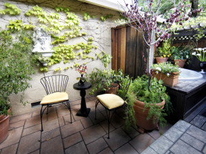 Guest patio at Mount View Hotel & Spa.