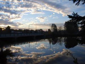 The Lake at The Riverside Motel/Mallards' Landing