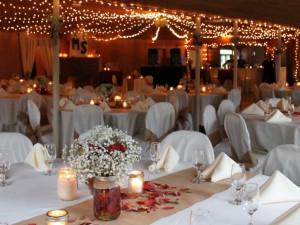 Wedding reception at Baumann's Brookside Summer Resort.