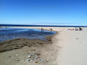 The beach at Shearwater Inn.