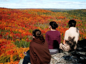 Fall colors at Eagle Ridge at Lutsen Mountain.