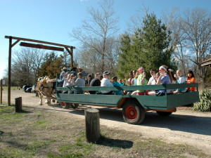 Hayride at YMCA Trout Lodge & Camp Lakewood.