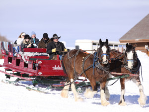 Sleigh ride at Utopian Luxury Vacation Homes.