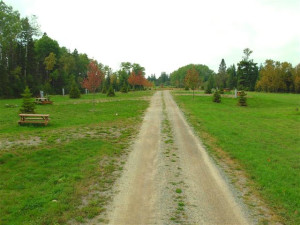 Park Area at Vermillion Sunsets RV Park
