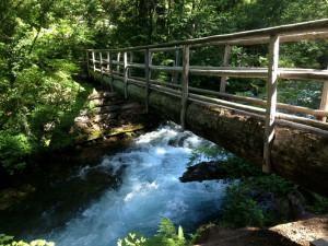 Bridge at McKenzie River Mountain Resort.