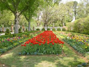 Garden near King's Creek Plantation.