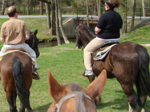 Horseback riding at Fernwood Resort.