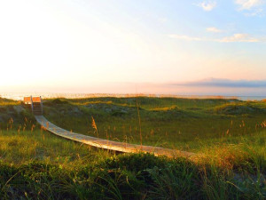Boardwalk to the beach at Bald Head Island Limited.