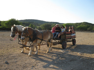 Wagon rides at Rancho Cortez.