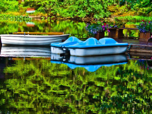 Pedal boats on the pond at A Pearson's Pond Luxury Suites and Adventures.