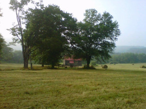 The Granary House taken from the Dinwiddie Trail at Meadow Lane Lodge and Cottages.