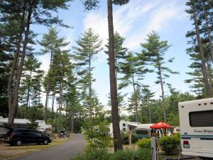 RV Park at Lake George RV Park.