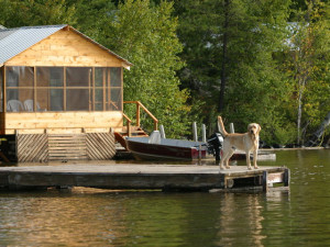 The Docks at Red Pine Wilderness Lodge