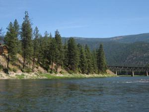 The Lower Clark Fork River at Clark Fork River Lodge.