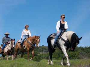 Horseback riding at Aspen Winds.