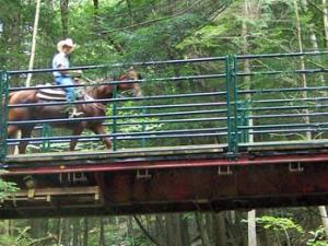 Horseback riding at Ridin-Hy Ranch Resort.