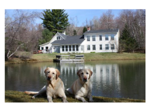 Pet friendly vacation homes at Stowe Country Homes.