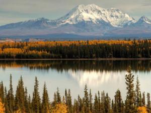 Fall in Alaska near Bridgewater Hotel.