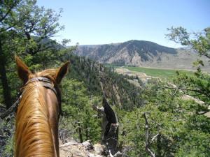 Horseback riding at Harmels Ranch Resort.