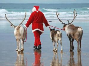 Celebrate the holidays at Anna Maria Vacations.