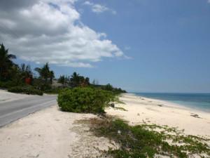 Beautiful Beach at Orange Hill Beach Inn