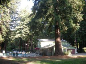 Exterior view of Redwood Resort.