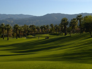 Golf Course at Marriott Desert Springs Resort