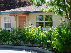 Exterior view of Carlin Country Cottages.