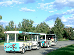 Ride the Wedgewood Resort tram.