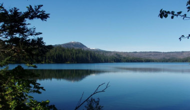 Beautiful Nature View at The Lodge at Suttle Lake