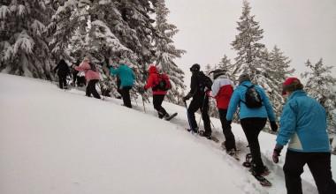 Snowshoeing at Murphy's Resort.
