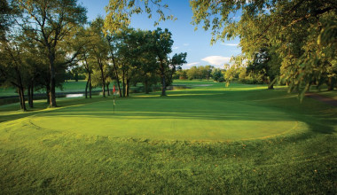 Golf greens at Coachman's Golf Resort.