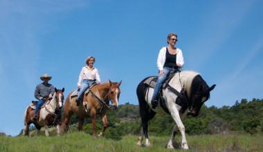 Horseback riding at Aspen Winds.