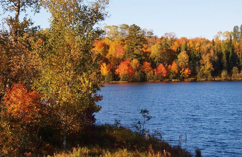 Fall colors at Nutmeg Country Inn.