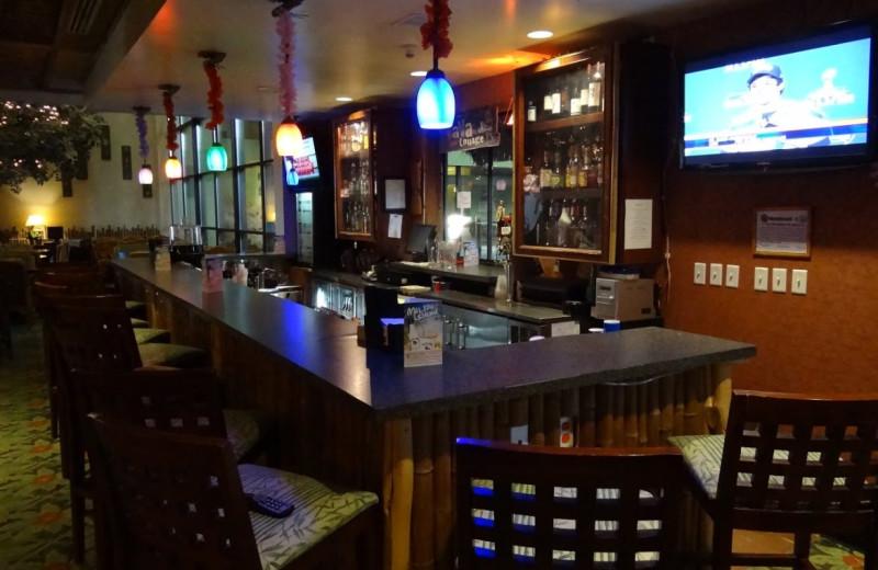 Bar view at Maui Sands Resort & Indoor Waterpark.