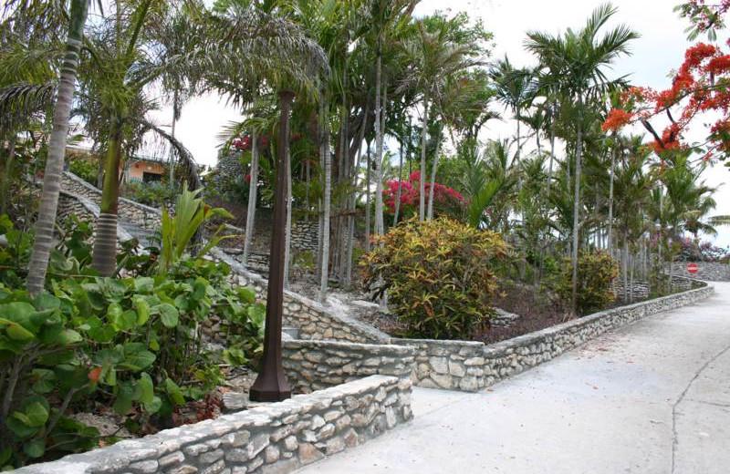 Scenic paths at Orange Hill Beach Inn.