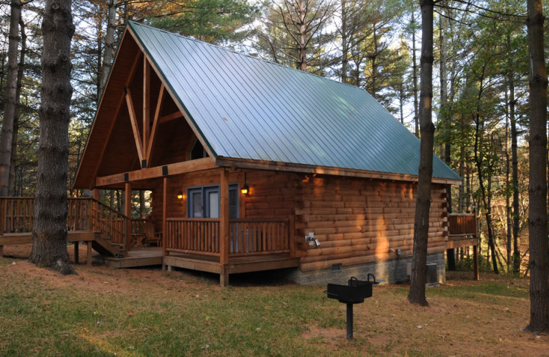 Pet friendly cabins at The Cabins at Pine Haven.