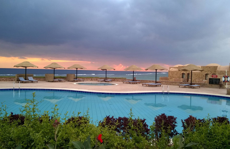 Outdoor pool at Mövenpick Quseir Resort.