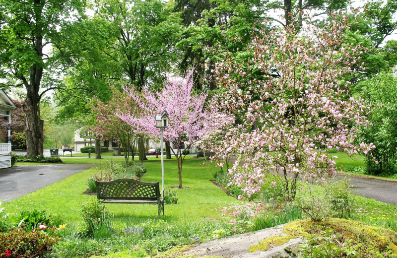 Spring time at Stonegate Bed & Breakfast