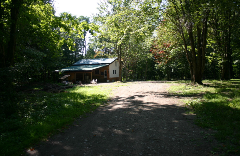 Exterior view of Cabin at the Gorge.