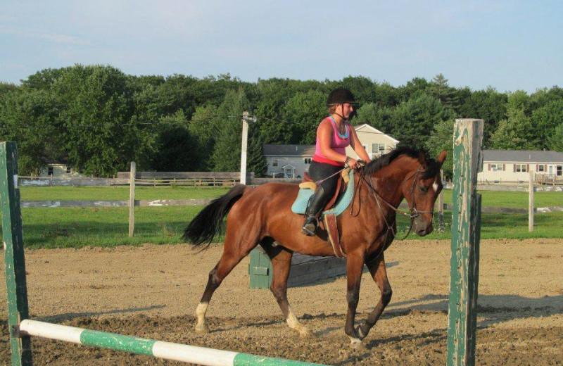 Horseback riding lessons at Farm by the River Bed & Breakfast.
