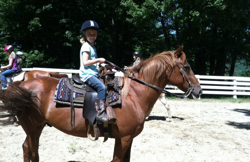 'Adopt A Horse' at Roaring Brook Tennis and Ranch Resort