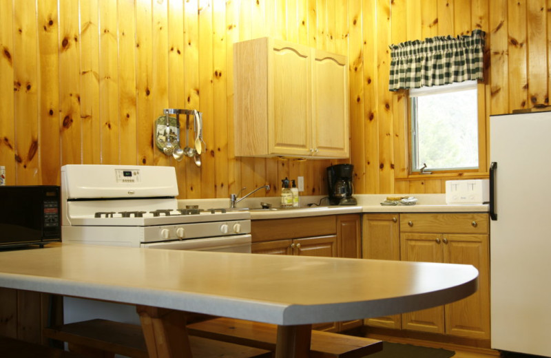 Cabin kitchen at Nor'Wester Lodge & Canoe Outfitters.