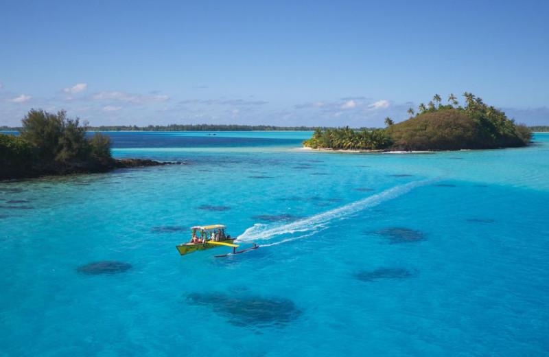 Diving at Bora Bora Beachcomber Inter-Continental Resort.