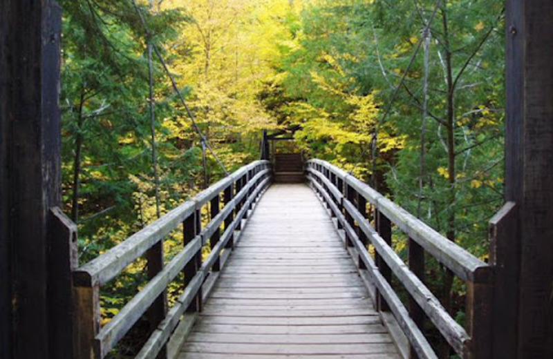 Bridge view at Mountain View Lodges.